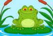 Cute green frog cartoon on a lily pad